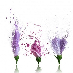 8. Fototapet floral floral deconstruct