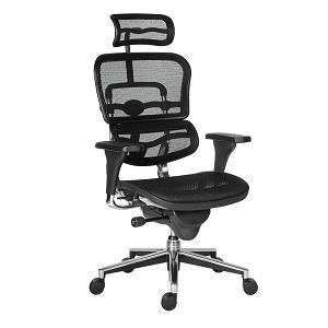 1.Scaun ergonomic Ergohuman v1 Plus (5)