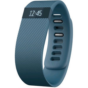 2. Fitbit Charge Large