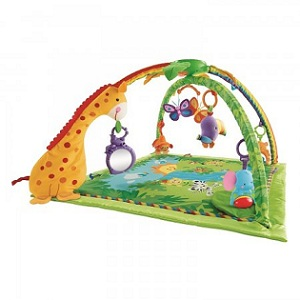 5. Fisher Price Rainforest