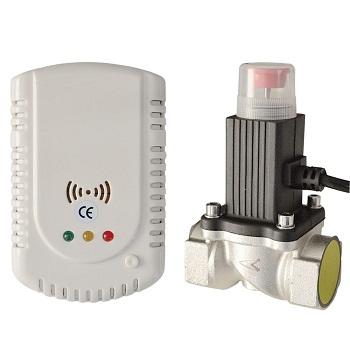 A.2 Detector gaz