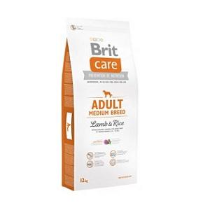 1-brit-care-adult-medium-breed-miel-si-orez