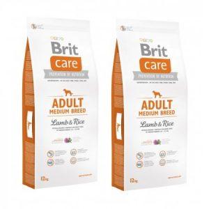 mancare-hrana-caini-brit-care-task-1