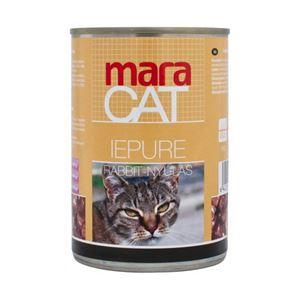 2-pisici-mara-cat